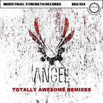 ISR DIGI 034 Angel - Totally Awesome Remixes